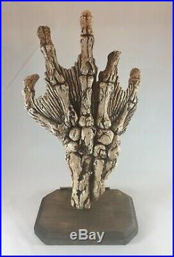 Creature from the Black Lagoon Fossil Claw Monster Prop Replica